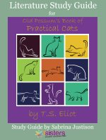 Old Possums Book of Practical Cats by T.S. Eliot Literature Study Guide