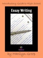 Introductory Guide to High School Essay Writing