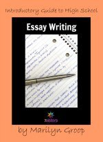 Introductory Guide To High School Essay Writing  Introductory Guide To High School Essay Writing