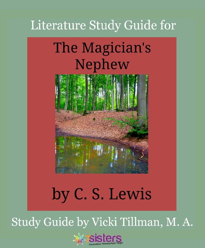 a literary analysis of magicians apprentice The magicians is a new adult fantasy novel by the american author lev injecting mature themes into fantasy literature the magicians won the 2010 alex.