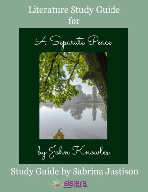 a separate peace coming of age novel Best answer: did you read the book this novel is a flashback to the year 1943, when gene is attending devon school during his senior year and the summer before it gene's youth and inexperience make him ill-equipped to deal with situations that require maturity however, gene is a follower.