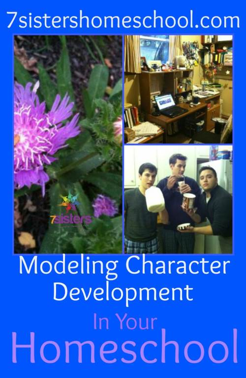 character development in your homeschool